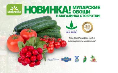 Овощи Мулярски в магазинах Стокротка!