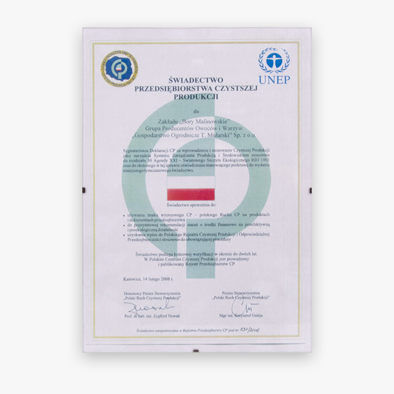 Certificate of Cleaner Production Company