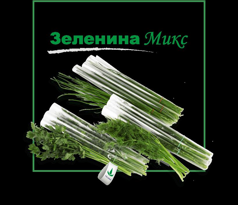 Зеленина Микс