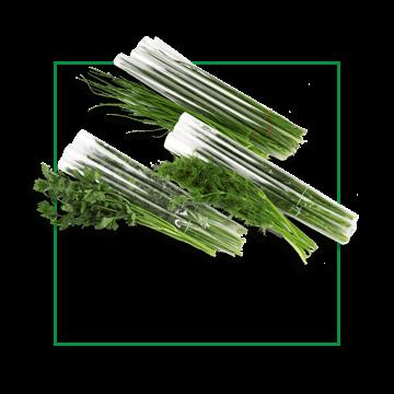 zielenina-mix