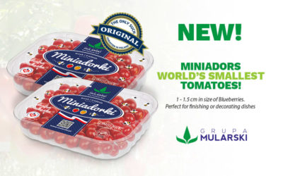 New! Miniadors, the smallest tomatoes in the world.