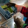 pakowanie-ogorka