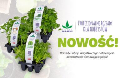 Rozsady Hobby – profesjonalne rozsady wTwoim ogrodzie!